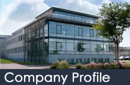 2019 company profile