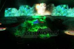 2013_Birdnest_Laserworld-0021.jpg