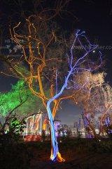 HB-Laser_Noor_Island_UAE_0009_web.jpg